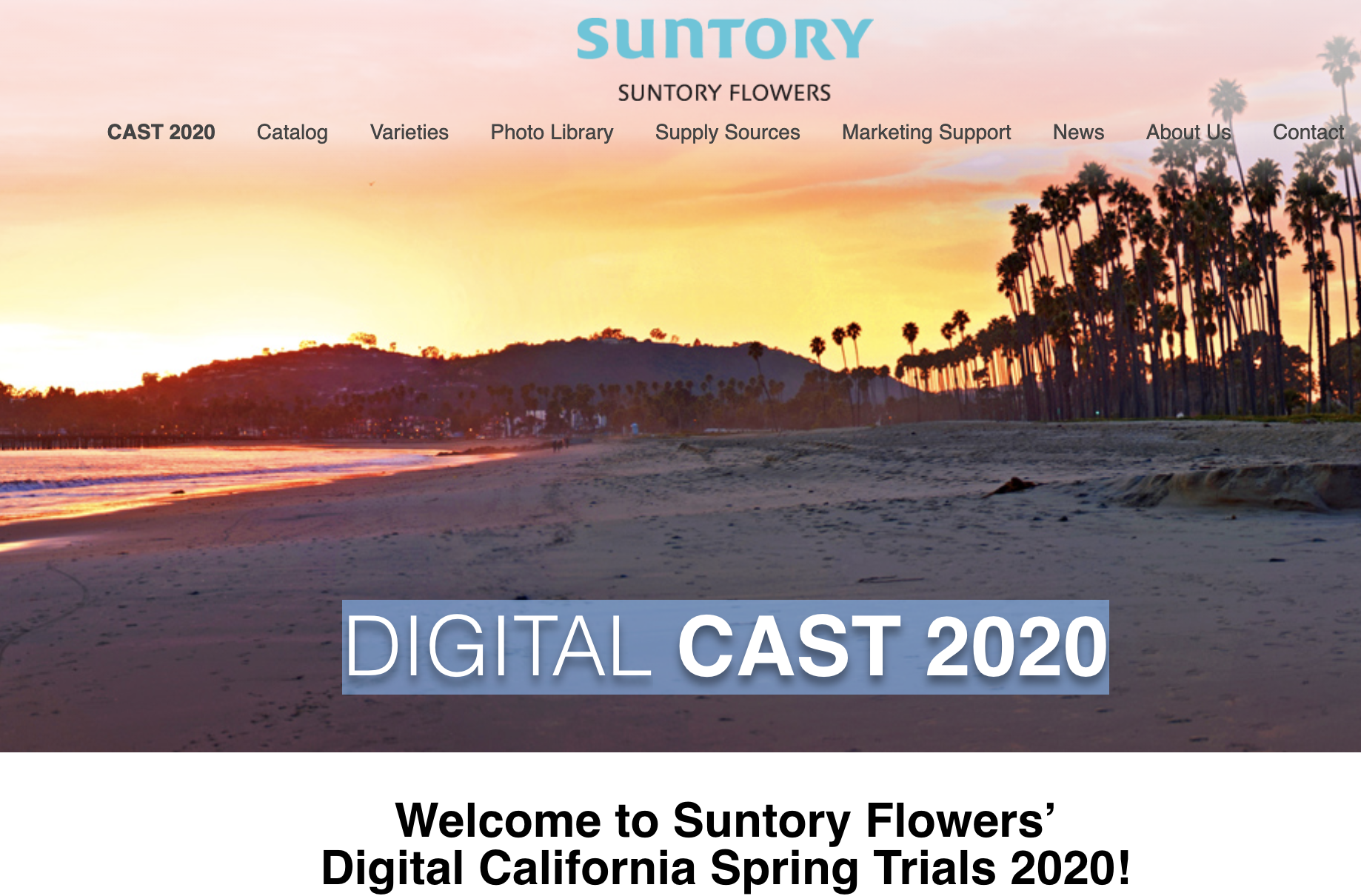 Suntory Digital Cast 2020